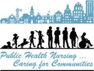 role of public health nurse with homeless population Assurance refers to the role of public health in mak- ing sure that essential community-wide health services are available and accessible (stanhope and lancaster, 2004.
